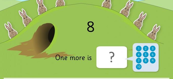 bunnyMaths